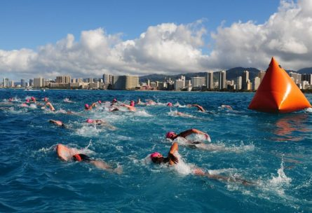 Open-Water-Swim-Races-6-1024x680